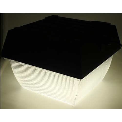 NEW! 80W LED Canopy Light Fixture
